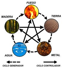 5-elementos-ciclo1