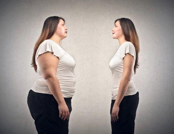 Flora intestinal y pérdida de peso | Vive la kine